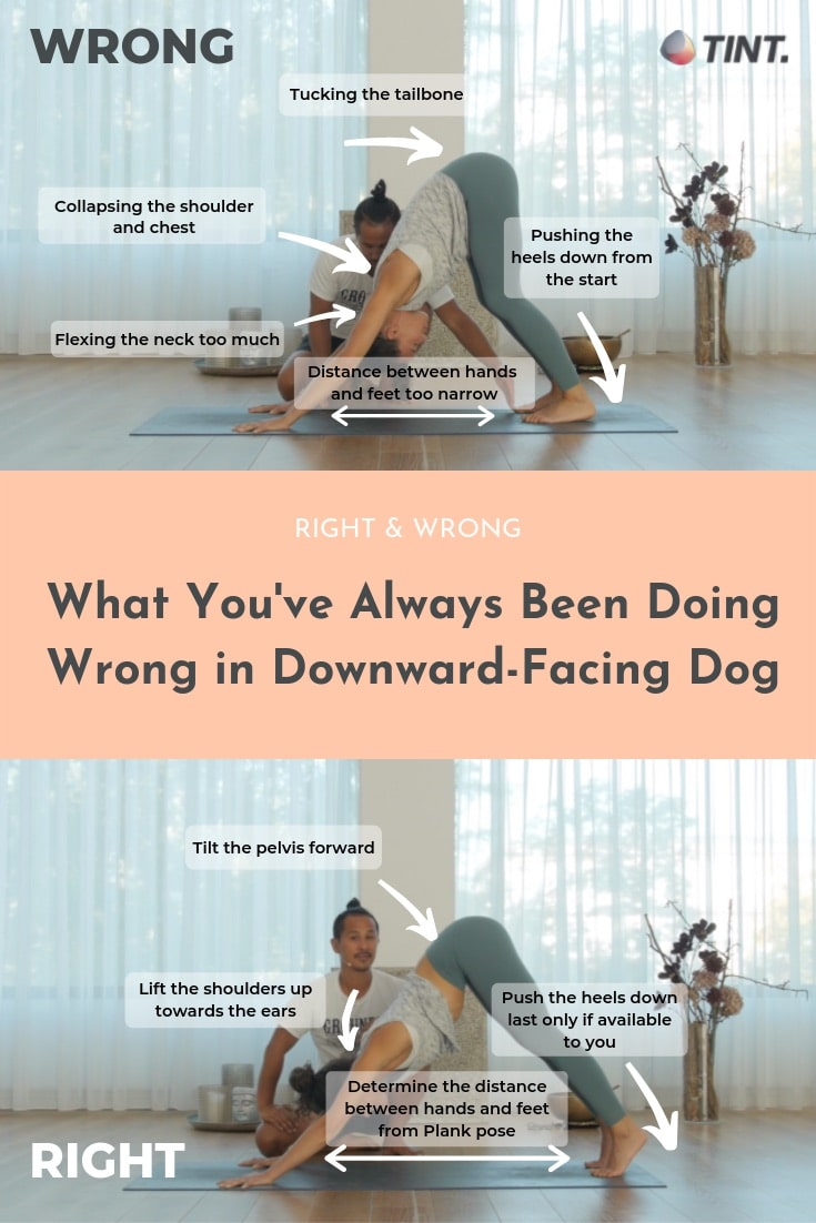 Downward Facing Dog Alignment Are You Doing It Wrong   TINT Yoga