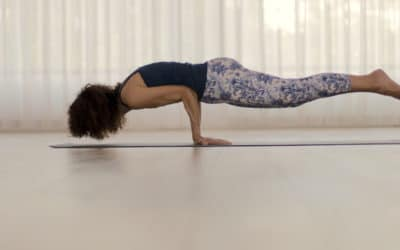 Functional Movement – by Desirée Rumbaugh & Andrew Rivin