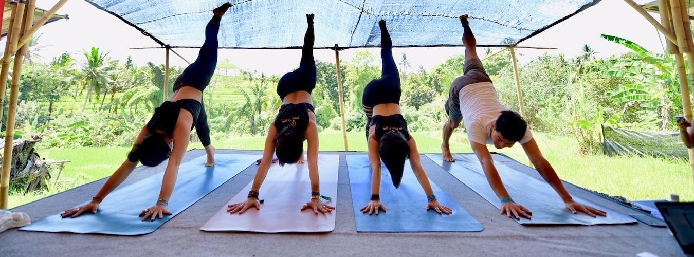 Four yoga students doing three-legged dog on wooden terrace