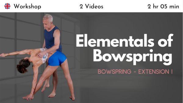 Desi Springer & John Friend - Bowspring Extension 1 - Elementals of Bowspring