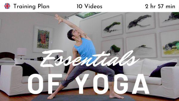 Matt Giordano - The Essentials of Yoga