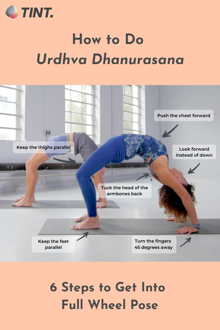 Wheel Pose Urdhva Dhanurasana – Queen of Yoga Backbends   TINT Yoga