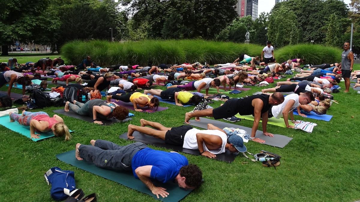 Yogaklasse im Grünen macht Yogapose Chaturanga