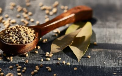 Traditional Chinese Medicine: A Holistic Practice that Yoga Can Complement